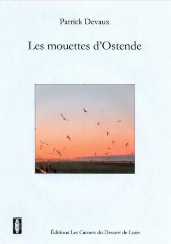 les_mouettes_d_Ostende-1cd20.jpg